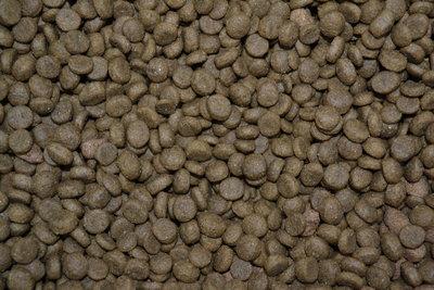 Zalm & Rijst Premium 1 kg